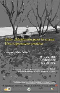 Adaptación_taller_Pachuca